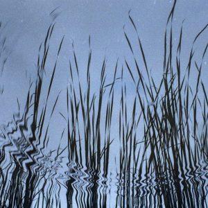 Reflections - Fuji 200, Chinon CM4s, Octomber 2014