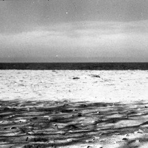 Vadu Beach - AZO 100 Chinon CM4s, May 2014